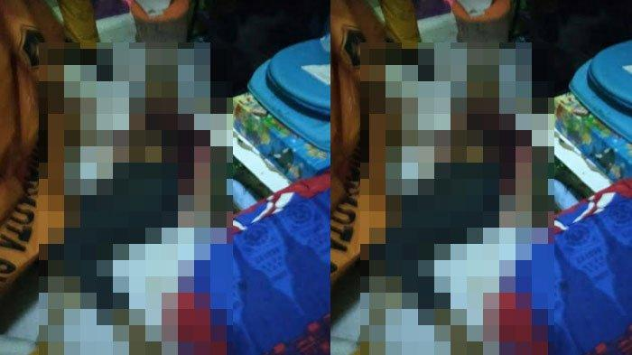 Mantan TKW yang Tewas Bersimbah Darah di Desa Demung Situbondo Diduga Jadi Korban Pembunuhan