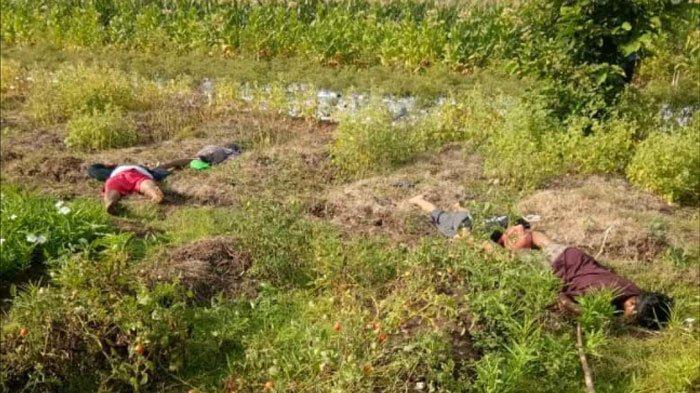 Satu Keluarga di Bojonegoro Ditemukan Tewas di Sawah, Satu Persatu Meninggal Karena Tersetrum