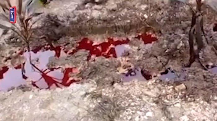 Video Viral Kuburan Tergenang Cairan Merah, Terkenang Sosok di Baliknya, Polisi Lakukan Penyelidikan