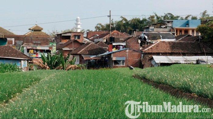 Tips Beli Tanah dan Jual Tanah Agar Terhindar dari Penipuan, Pastikan Buat PPJB di Hadapan Notaris