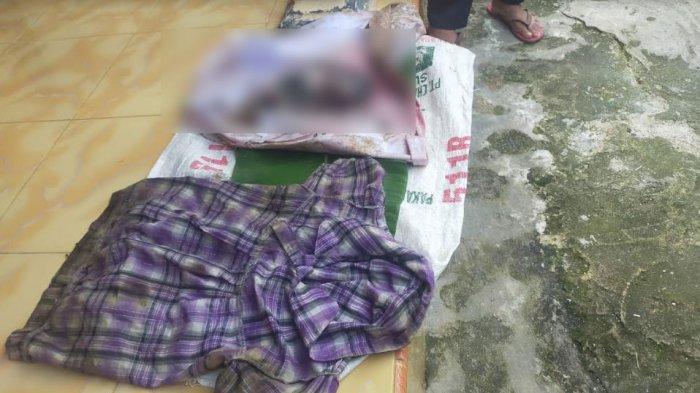 BREAKING NEWS - Mayat Bayi Perempuan Ditemukan di Dekat Kuburan Sumenep, Usia 7 Bulan di Kandungan