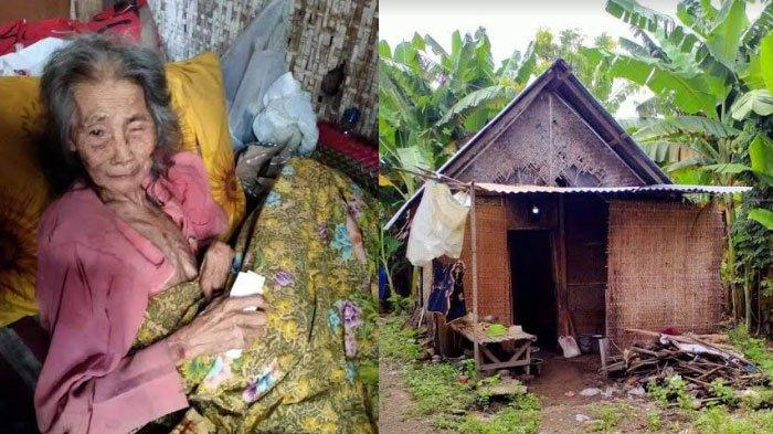 Derita Nenek Penjual Kacang di Kabupaten Kediri yang Lumpuh dan Tinggal Seorang Diri di Gubuk Reot