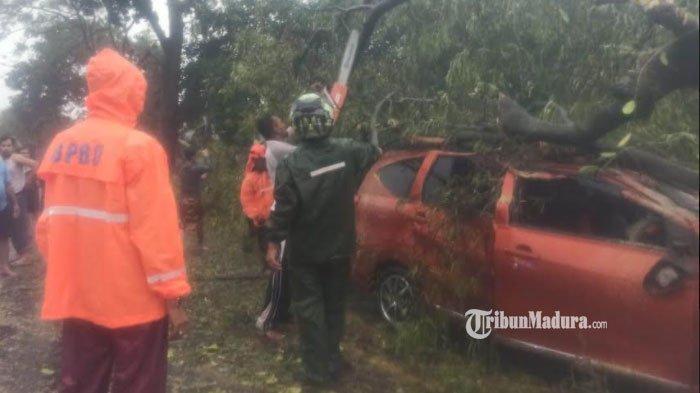 Mobil Anggota TNI Ringsek Tertimpa Pohon di Kecamatan Socah Bangkalan, Pengemudi Luka Ringan