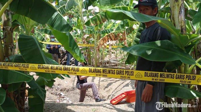Suara Aneh dari Pekarangan Rumah Mirip Mencacah Pohon Pisang,Abdul Rozak Lihat Ayah Dibacok Anaknya