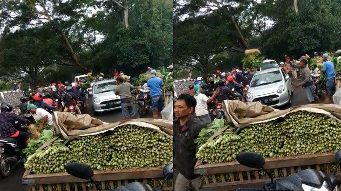 Fakta Lengkap Pedagang Bagi-Bagi Sayur ke Pengendara Jalan di Malang, Videonya Viral di WhatsApp