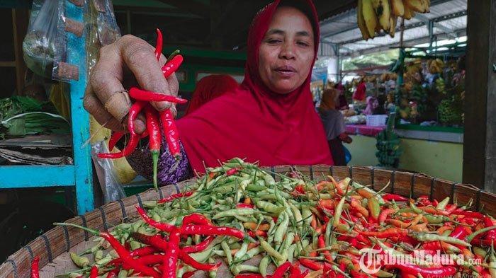 Harga Cabai Rawit di Pamekasan Tembus Rp 125.000 Perkilo, 1 Bungkus Isi 5 Buah Cabai Dihargai Rp2000