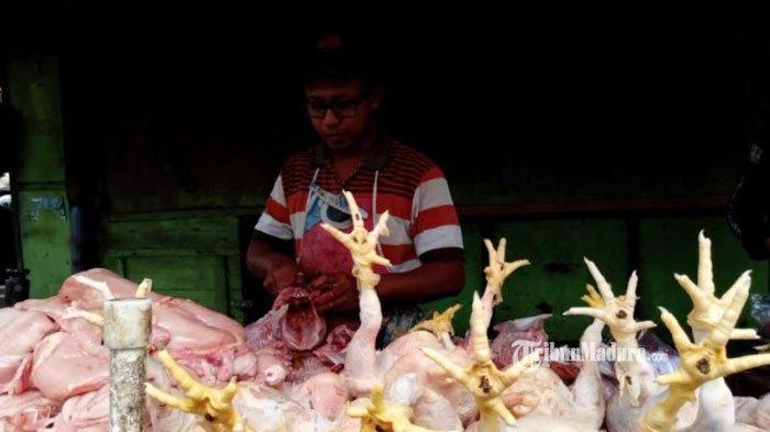 Memasuki Ramadan 2021, Harga Daging Ayam di Tulungagung Tembus Rp 40 Ribu Perkilo, Hal ini Pemicunya