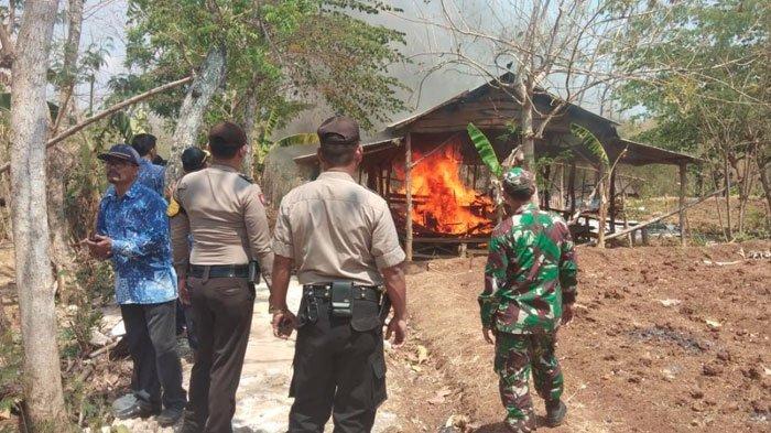 Resahkan Warga, Arena Sabung Ayam di Tengah Hutan Desa Dibakar Polisi hingga Tokoh Masyarakat