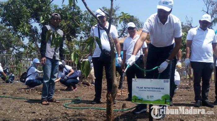 Peringatan HariLingkungan Hidup Dunia,15.000 Bibit Pohon Mangrove Ditanam di Pesisir Pasuruan