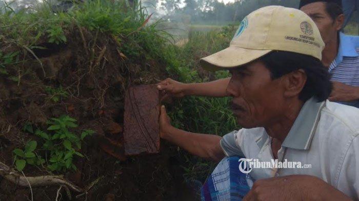 Misteri Penemuan Batu Bata Kuno di Bondowoso, Pengambil Dipercaya Didatangi Sosok Pria dalam Mimpi