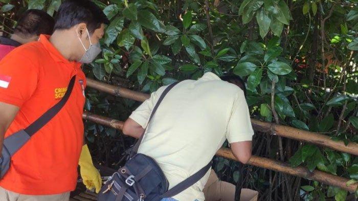 Bagian Kepalanya Sudah Tidak Utuh, Mayat Bayi Ditemukan Nelayan di Sungai Mangrove Surabaya