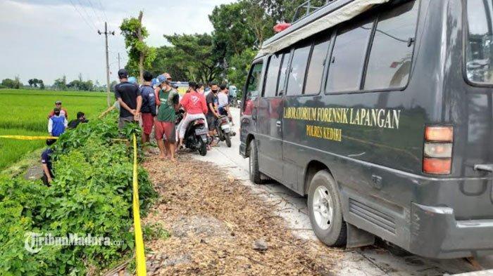 Petani Kaget Temukan Sesosok Mayat Tanpa Identitas di Parit Sawah Kediri, Korban Diduga Dibunuh