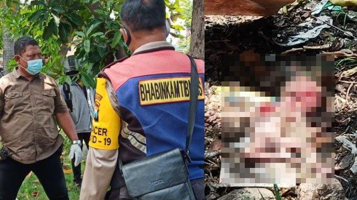 Mayat Janin Ditemukan di Tumpukan Sampah Area Taman Surabaya, Separuh Kepalanya Dimakan Kucing