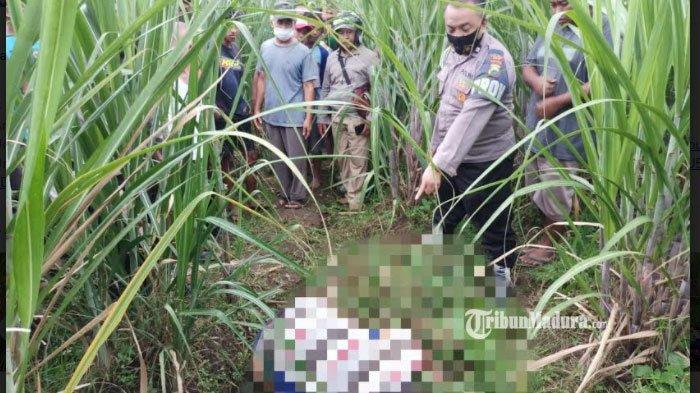 Pamit Cari Rumput untuk Pakan Ternak, Petani Kediri Ditemukan Tewas di Hamparan Kebun Tebu