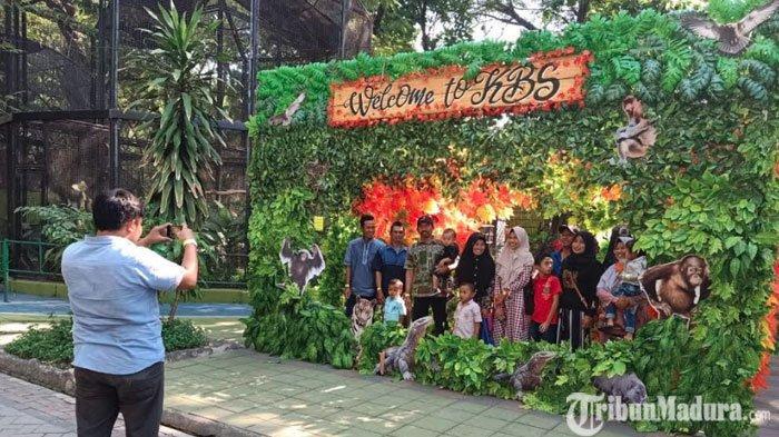 Kebun Binatang Surabaya Belum Dibuka, Penutupan KBS Diperpanjang hingga25 Juni 2020 Mendatang