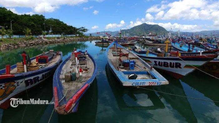 Pemkab Trenggalek Rencana Budidaya Benih Lobster, Siapkan Teluk Prigi hingga Munjungan Jadi Lokasi