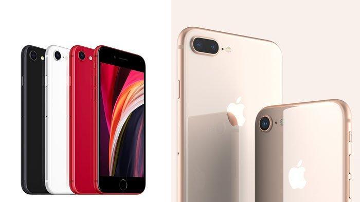 Daftar Harga iPhone, Mulai iPhone 7 Hingga iPhone 11, ada Perbandingan iPhone SE dengan iPhone 8
