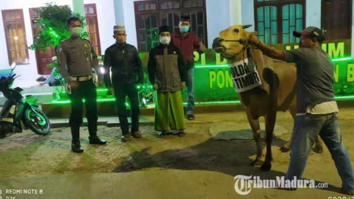 Kapolda Jatim Beri Bantuan Sapi ke 3 Ponpes di Pamekasan, untuk Disembelih Saat Hari Raya Idul Adha