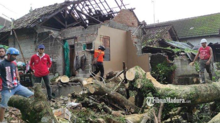 Tiga Rumah di Kota Blitar Rusak Ditimpa Pohon Tumbang Berdiameter 2 Meter Akibat Hujan dan Angin