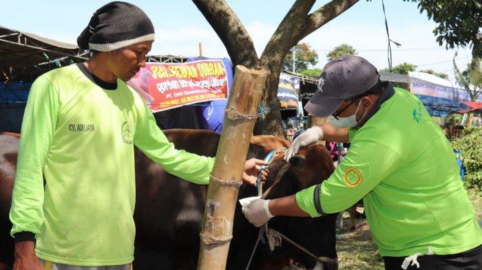 Satpol PP Ingatkan Warga Surabaya Jangan Berkerumun dan Bergerombol Saat Penyembelihan Hewan Kurban