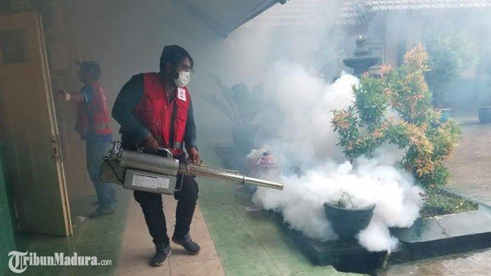 PMI Jember Fogging Area Sekitar SMPN 1 Rambipuji Usai Terima Kabar 2 Warga Setempat Tewas karena DBD