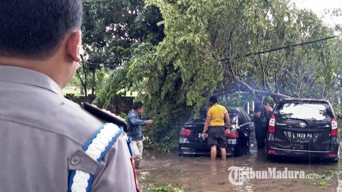 Bangkalan Diterjang Hujan Deras Disertai Angin Kencang, Permukiman Terendam Banjir dan Pohon Tumbang