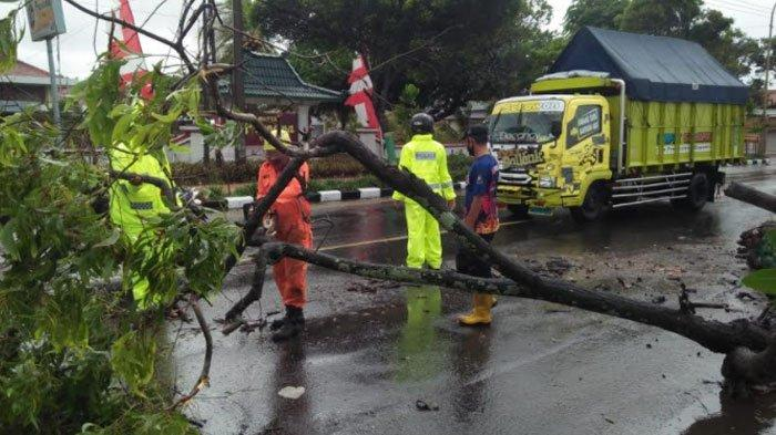 Akhir Maret, Sejumlah Wilayah Jawa Timur Sudah Masuk Musim Kemarau Meski Ada Peluang Turun Hujan