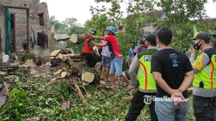 Daftar Wilayah di Kota Blitar yang Alami Pohon Tumbang Akibat Hujan Deras Disertai Angin Kencang