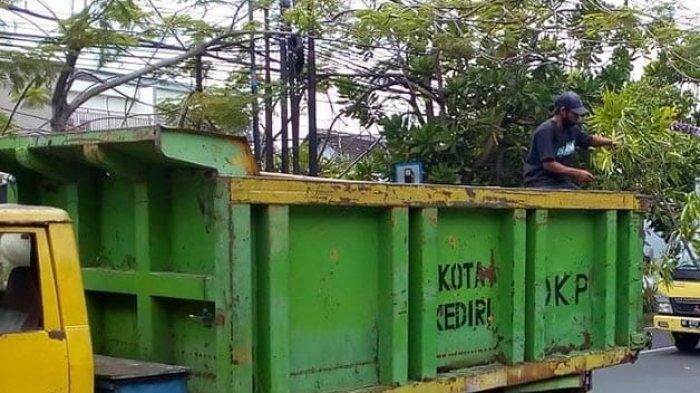 Hujan Deras Mengguyur Kota Kediri, Sejumlah Pohon Tumbang