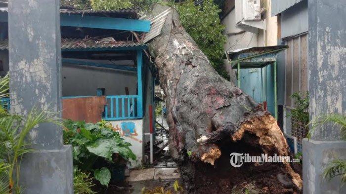 Kota Malang Diguyur Hujan Deras Minggu Sore, Genangan Air Terjadi di Jalan Gajayana hingga Sudimoro
