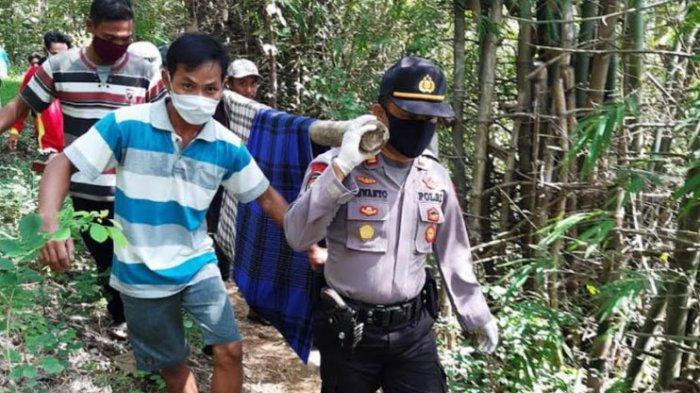 Kakek Tulungagung Tewas Terjatuh dari Tebing Perbukitan Dusun Plenggrong saat Mencari Kayu Bakar