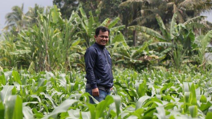 Rizki Hamdani, Penggerak Santri Tani Milenial di Jombang Beromzet Ratusan Juta Rupiah Per Bulan
