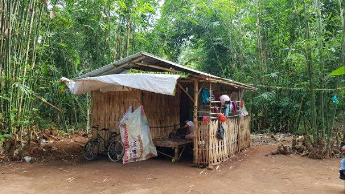 Tidur di Hutan Bambu karena Tak Mampu Bayar Kos, Warga Sumenep yang Terdampak Corona: Kami Diusir