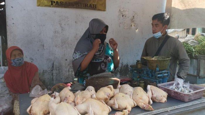 Awal Ramadan 2021, Harga Ayam Broiler di Kabupaten Kediri Meroket, Tembus Rp 40 Ribu Per Kilogram