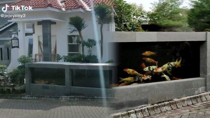 Viral di TikTok Pagar Rumah Kolam Ikan Koi, Pemilik Beberkan Koleksi Hingga Terungkap Biayanya