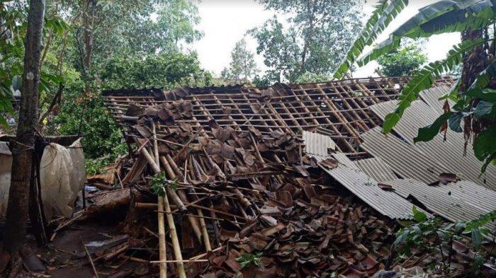 Angin Puting Beliung diJatianBondowoso, Rumah Nenek Sena Roboh Tertimpa Pohon Mahoni15 Meter