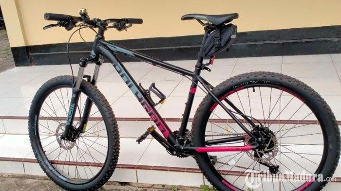 PNSdi Sumenep Curi SepedaAngin di Area Taman Bunga, Ungkap Pengakuan Mengejutkan Tujuannya Mencuri