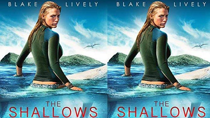 Sinopsis Film The Shallows, Mengisahkan Perjuangan Peselancar Melawan Hiu Putih di Tengah Laut