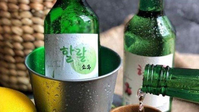 Soju Minuman Khas dari Korea, Kini Muncul Soju Halal, Bisa Merasakan Minuman Khas Drama Korea