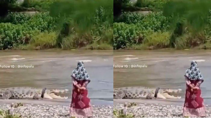 VIDEO Sosok Wanita di Dekat Buaya Berkalung Ban yang Muncul dari Sungai, Viral di Media Sosial