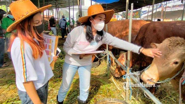 Dongkrak Penjualan, Pedagang Hewan Kurban ini Rekrut SPG Bergaya ala Cowgirl untuk Layani Pembeli