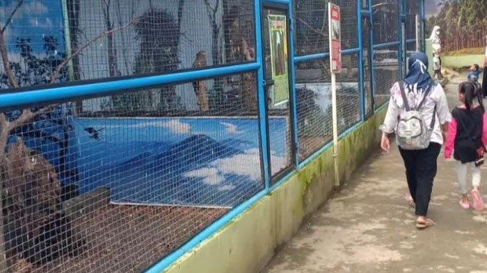 Dua Pekan Dibuka, Seluruh Pengunjung Madiun Umbul Square Diminta Patuhi Protokol Kesehatan