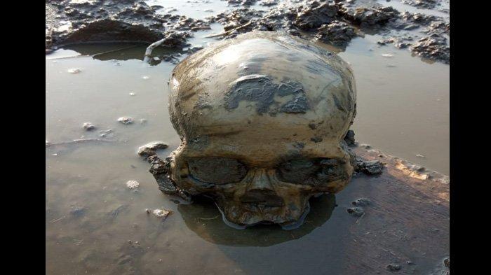 Kuburan Massal Berusia 5000 Tahun Mengungkap Momen Tragis Masa Lalu, Kisah Pembantaian Terlihat