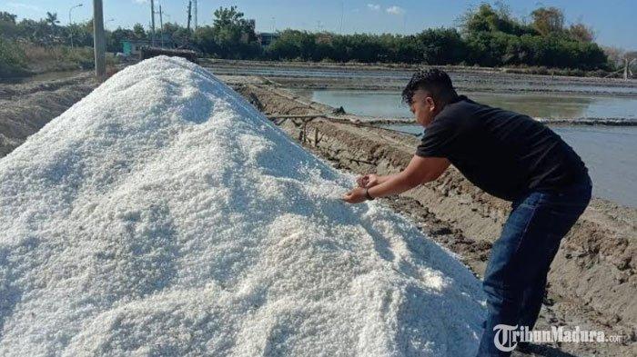 Dinas Kelautan dan Dinas Perikanan Jatim UsulkanHarga Pokok Penjualan GaramRp 600 RibuPer Ton