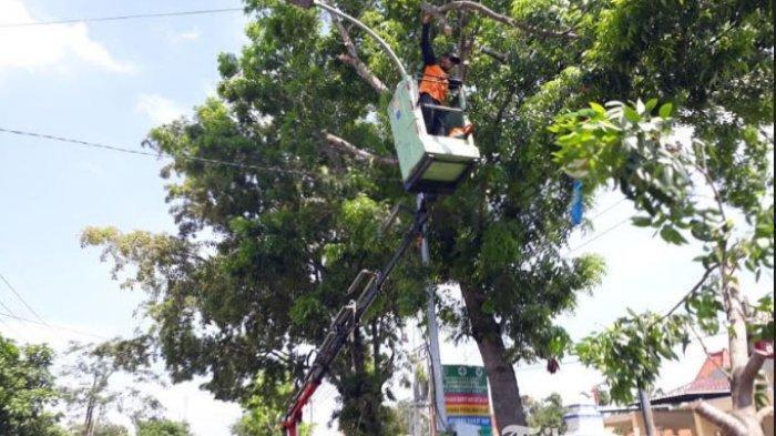 Antisipasi Tumbang Saat Musim Hujan, Ranting Pohon Rimbun di Depan Puskesmas Torjun Sampang Dipotong