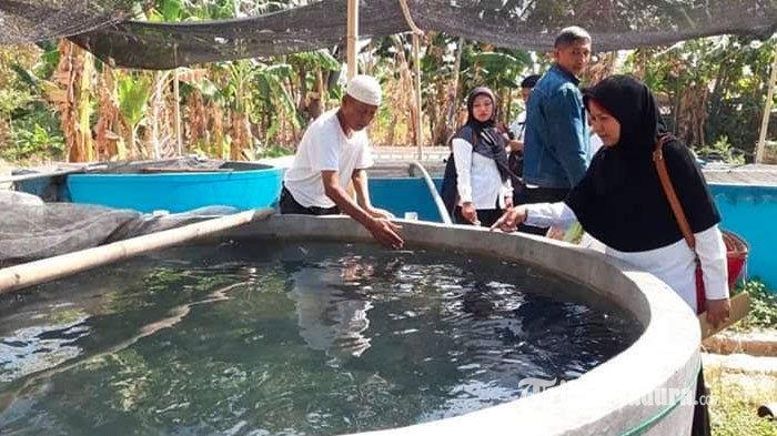 Dinas Perikanan Pamekasan Berikan Sertifikat Tanah untuk 50 Pembudidaya Ikan yang Lolos Pemberkasan