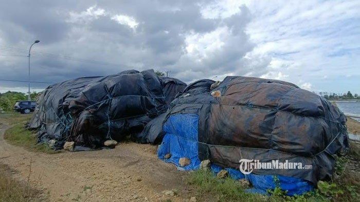 Tak Terserap Perusahaan, Garam Hasil Produksi Petani di Sampang Mengendap sampai Ratusan Ton