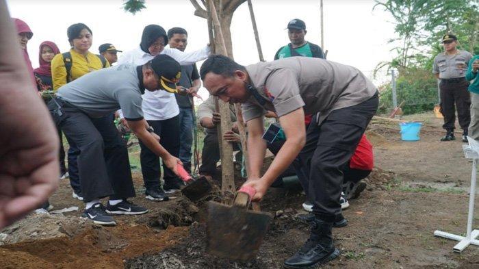 Hijaukan Stadion GBT Markas Bajul Ijo Persebaya, Risma dan Kapolrestabes Tanam Seribu Bunga Tabebuya