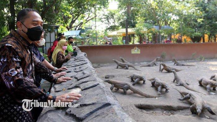 Kebun Binatang Surabaya Buka Hari Ini, Kapasitas Masih Dibatasi, Balita Belum Diizinkan