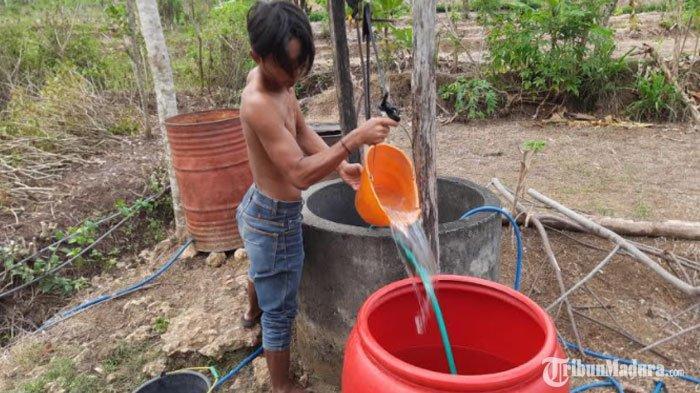 Akhir Puncak Musim Kemarau, 5 Desa diTrenggalek Alami Kekeringan, Banyak Sumber Air yang Mati